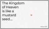 Mustard Seed - kingdom of heaven