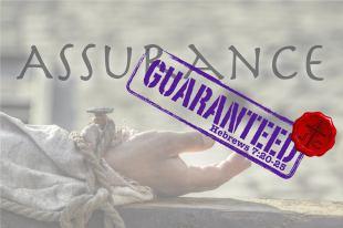 Assurance Guaranteed